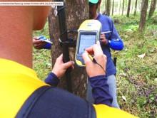 Transparente Forstwirtschaft: Life Forestry führt Trimble-GPS für Baumvermessung ein