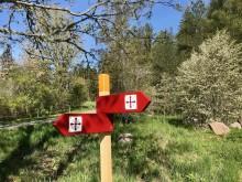 Vikingaleden i Grisslehamn invigs den 6-7 juni