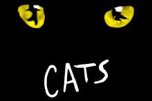 Enormt intresse för musikalen CATS - fler föreställningar släppta!