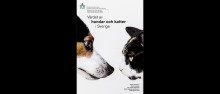 Hundars och katters bidrag till samhällsekonomin har beräknats