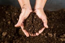 Se avfallet som en tillgång för en grönare och skönare trädgård – kompostera istället för att slänga