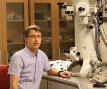 Vad hände med de hajpade nanomaterialen?