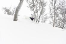 Snörik jul väntar – Över 50 cm snö i terrängen på SkiStars Skandinaviska skidorter