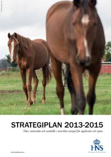 HNS strategiplan 2013-2015