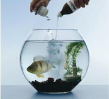 PRESSVISNING: Läkemedel i vårt avloppsvatten – vems huvudvärk är det?