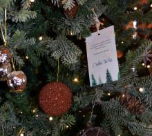 Ensamma julgranar söker julklappar till Trygga Barnen