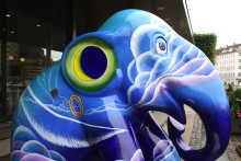 Community Investment Programme Update: Supporting Elephant Parade in 2012