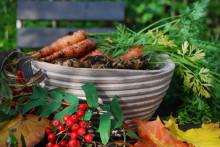 Pressinbjudan: Skördetid för kostpersonal i måltidsprojekt