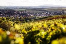 Reselandet Tyskland populärare än någonsin