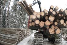 Skogsbrukets maskiner allt törstigare