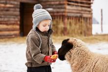 Djurklappar går före julklappar i nytt julkoncept