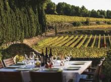 Viinin tie sähköautolla Kataloniassa