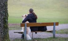 Försäkringsbolag hjälper våldsutsattas djur