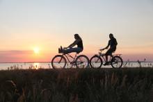 Fem gange nordtysk cykelferie med indlagte specialiteter