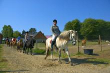 Leaderprojekt utvecklar hästturismen