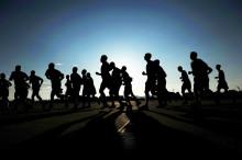 """Vorinformation: """"Wildau Runners' Day"""" – 1. Wildauer Stadtlauf am 30. September 2018"""