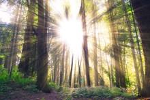 Myter kring energi hindrar ny miljövänlig teknik
