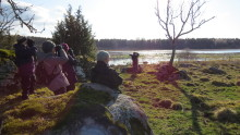 Första brittiska gruppresan till Hornborgasjön