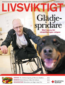 Tidningen Livsviktigt, nummer 3 2012