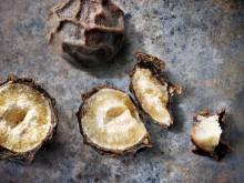 Svartpeppar - världens mest använda krydda