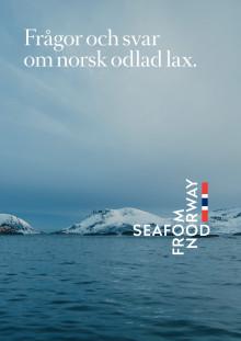 Frågor och svar om norsk odlad lax