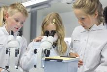 Heurekan tiedekerhot jatkavat suosittujen tiedeleirien jalanjäljillä