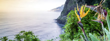 Apollo presenterar nya avgångar från Göteborg: Madeira och Dubai