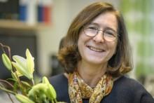 Erfaren professor får Medicinska fakultetens pedagogiska pris 2018