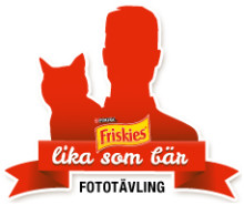 Nestlé Purina söker hundar och katter som är lika sina ägare