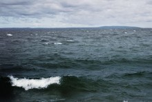 HaV stänger laxfiske i Östersjön - kvoten är uppfiskad