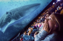 Oceans: Our Blue Planet kommer till Cosmonova!