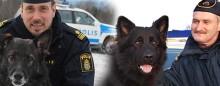 Izor och Puck blev Årets polishund(ar)