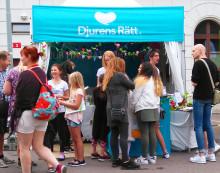 Allt fler bryr sig om djuren i Norrköping