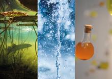 Tre utställningar på temat vatten på Vänermuseet i sommar