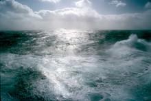 Formas beviljar 40 miljoner till forskning om stöd för klimatåtgärder