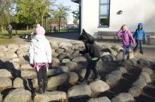 Två Sjöbo-lärare kan bli Årets lärare