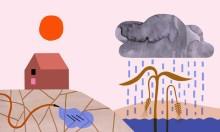 Om klimatförändringar i nya Miljötrender från SLU