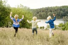 Sverige for børn og barnlige sjæle