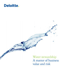 Water stewardship: A matter of business value and risk