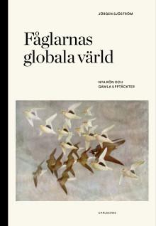 Ny bok: Fåglarnas globala värld