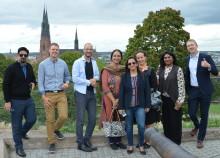 Indien tittar på Sverige som förebild för smarta elnät