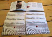 Träna tanken i näringslivet - En guide i att skapa individanpassade föreställningsövningar
