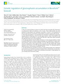 Traka et al 2013 - Genetic regulation of glucoraphanin...