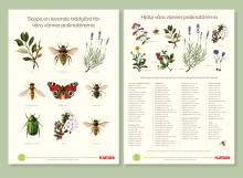 Pollinera Sverige sprider kunskap om humlor och bin i Plantagens butiker