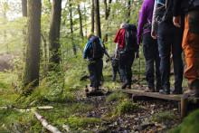 Norska och danska turister tillbaka i Sverige