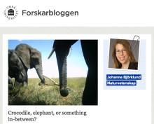 """Johanna på Umeå universitets """"Forskarbloggen"""" denna vecka"""