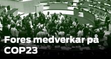 Fores på klimatförhandlingarna i Bonn, COP23