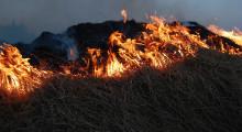 Risken för gräsbrand är stor på flera håll i länet
