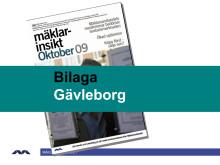 Gävleborgs län: Ränta och arbetsmarkand påverkar bostadsmarkanden mest just nu