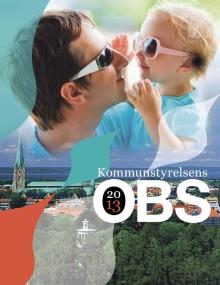 Stora utmaningar för Linköping i årliga OBS-rapporten